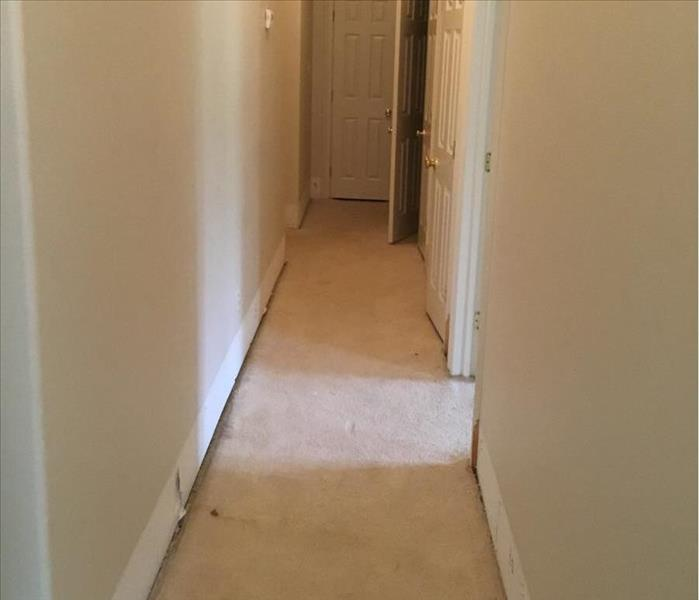 hallway with a beige water-damaged carpet and walls